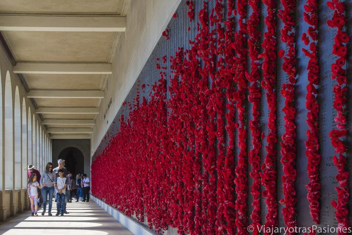 Memorial en el Australian War Memorial con amapolas y nombres de los caídos en las guerras de Australia
