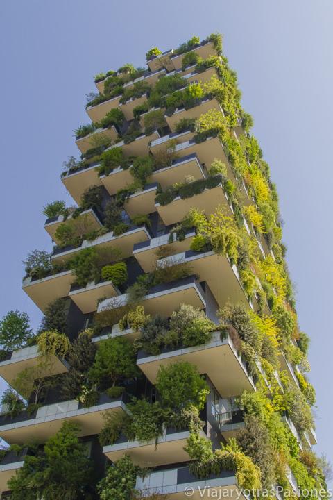 Increíble vista sul Bosco Verticale en Milán en dos días en Italia