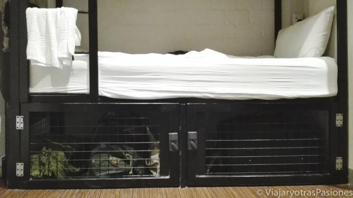 Seguridad en las camas en el hostel Loop 91 en Ciudad del Cabo en Sudáfrica
