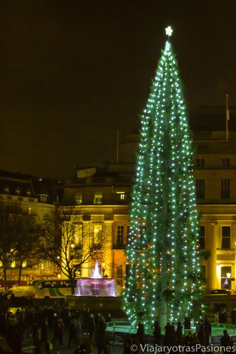 El árbol de Trafalgar Square, tan regio y solitario, en las luces de Navidad en Londres