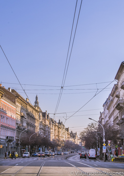 Bonita vista de la Avenida Andrassy en el centro de Budapest en Hungría