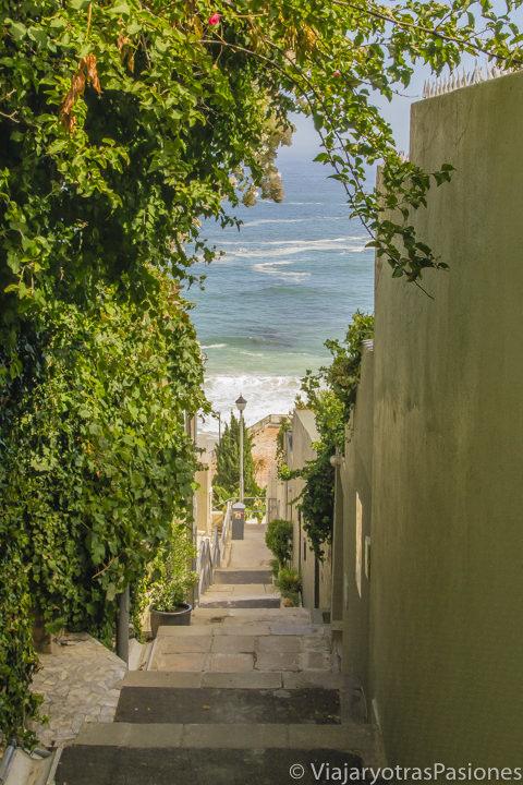 Bonito callejón en el pueblo de Clifton en el Road trip por la Península del Cabo en Sudáfrica