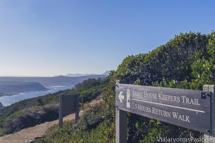 Camino panoramico cerca del Cabo de Buena Esperanza en el Road trip por la Península del Cabo en Sudáfrica