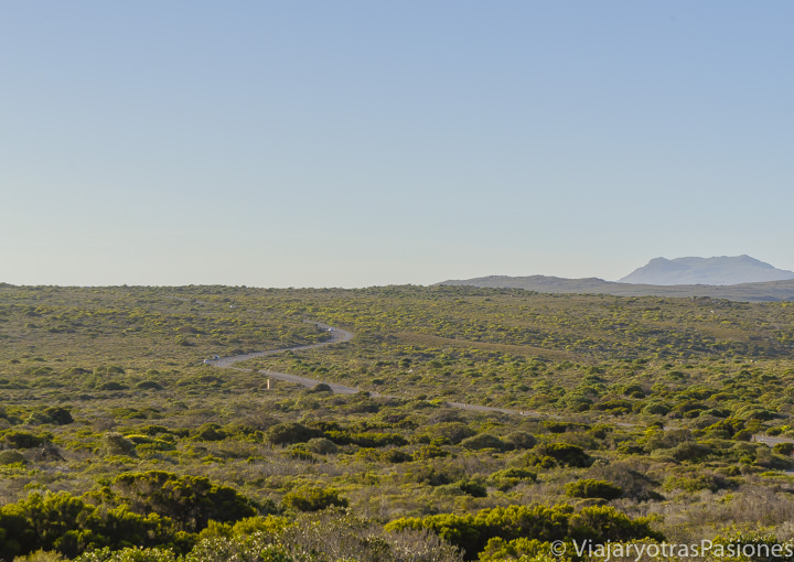 Maravillosa carretera en la Península del Cabo donde se puede conducir en Sudáfrica