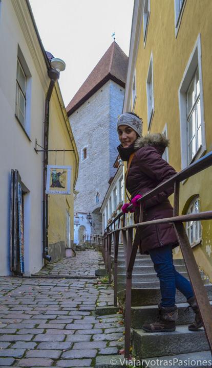 Alegre en un callejón medieval en el casco histórico en Tallin en un día en Estonia