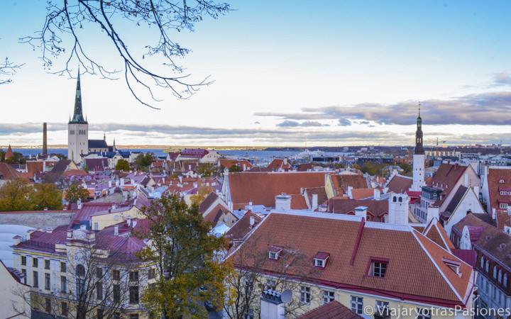 Vista panorámica del casco histórico de Tallin en Estonia