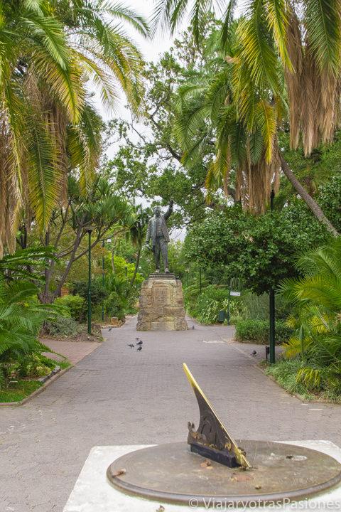 Detalle del Jardines de la Compañía en el centro de Ciudad del Cabo en Sudáfrica