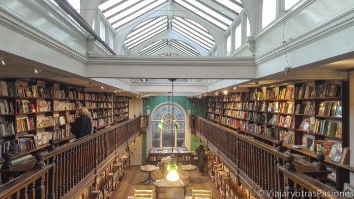 Sala principal de la famosa librería Daunt Books en Marylebone, Londres