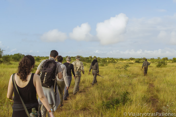 Walking safari: paseando por el bush con los rangers del Parque Kruger en Sudáfrica