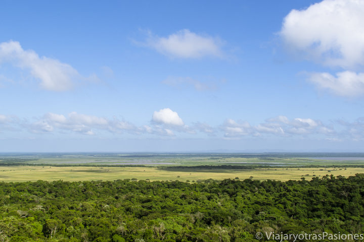 Panorámica del iSimangaliso Wetland Park, St.Lucia, Sudáfrica