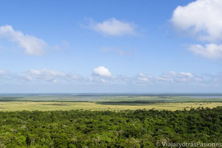 Increíble panorámica del iSimangaliso Wetland Park, St.Lucia, viajando en Sudáfrica por libre