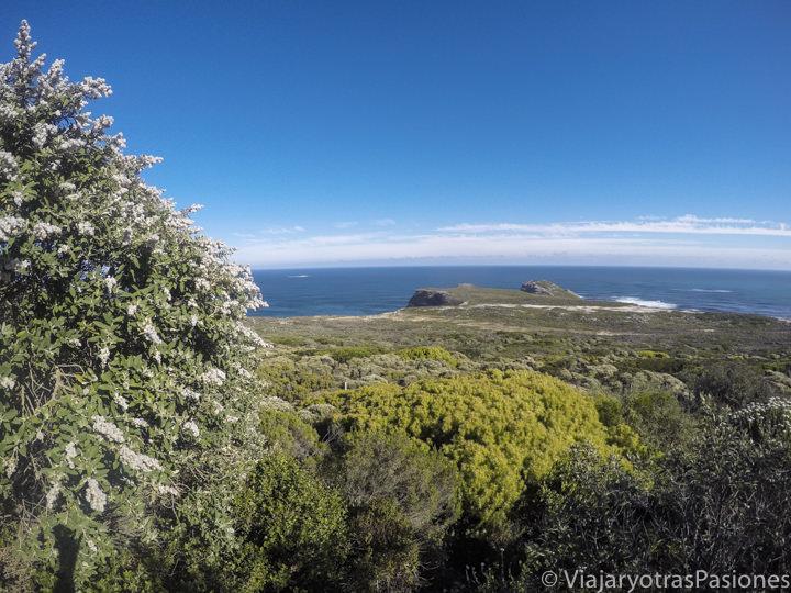 El mítico Cabo de Buena Esperanza en el Road trip por la Península del Cabo en Sudáfrica