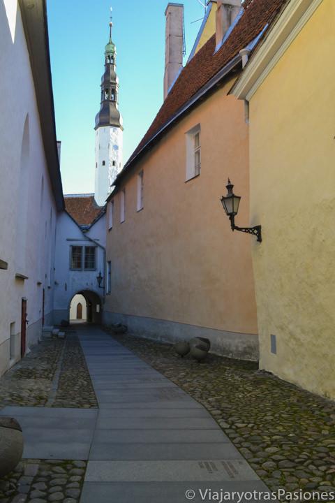 Pasaje Borsi y Historia de Estonia en Tallin cerca de la Plaza del Ayuntamiento