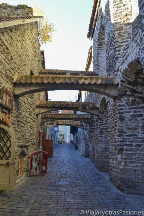 El bonito medieval pasaje de Santa Catalina, en Tallin en un día en Estonia