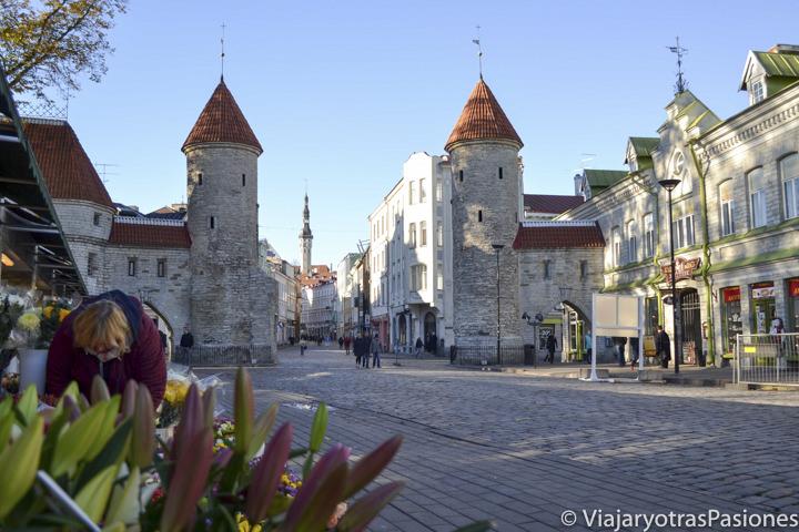 La famosa puerta Viru, por la que se accede al casco histórico de Tallin en Estonia