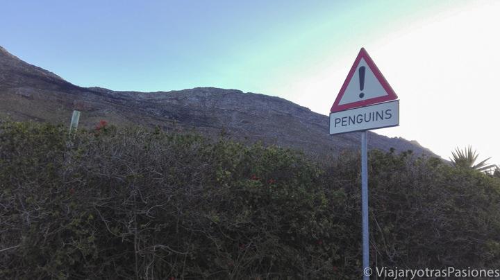 Señal de tráfico en el Road trip por la Península del Cabo en Sudáfrica
