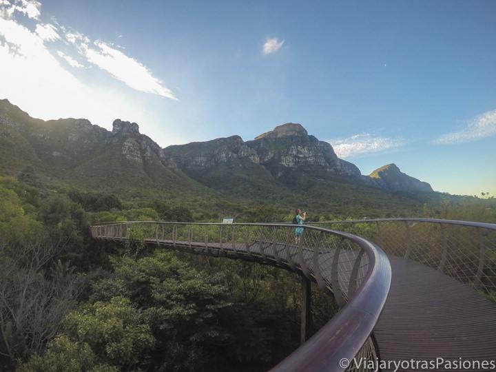 Maravillosa vista desde el Canopy Tree Walk en el Kirstenbosch Garden en Ciudad del Cabo en Sudáfrica