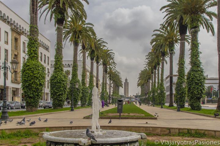 Impresionante Avenida Mohammed V en el centro de Rabat en Marruecos