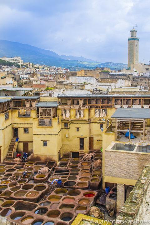 Coloridas curtidurías y vista magnífica de la medina de Fez en Marruecos