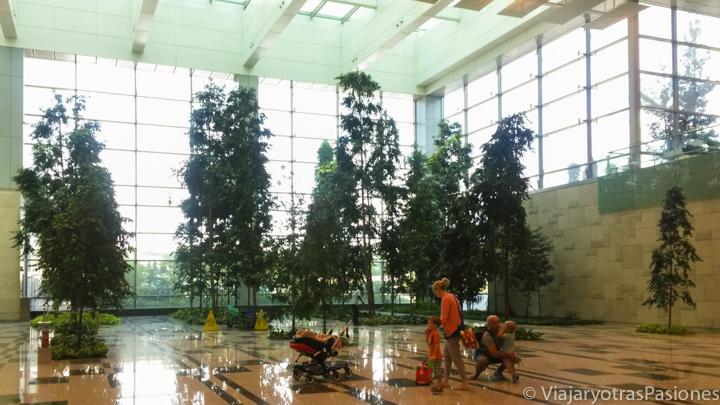 Patio interior del aeropuerto de Singapur Chiangi