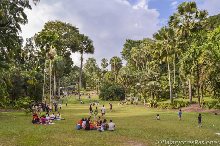 Panorámica del hermoso jardín botánico de Singapur