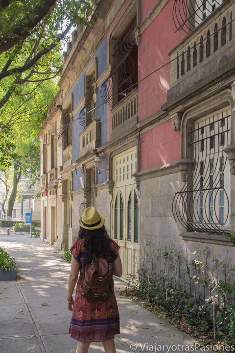 Típica calle del bonito barrio de la Condesa en CDMX, México