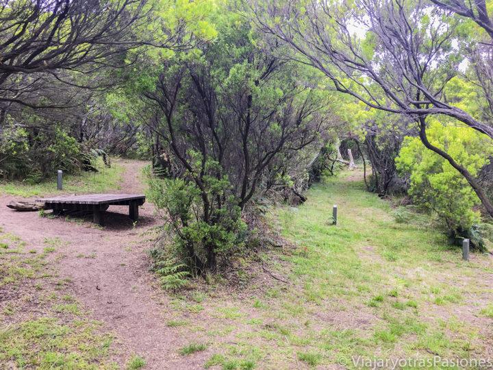 Uno de los campgrounds cerca de Cape Otway en la Great Ocean Road en Australia
