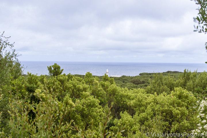 Vista del faro de Cape Otway en la Great Ocean Road en Australia