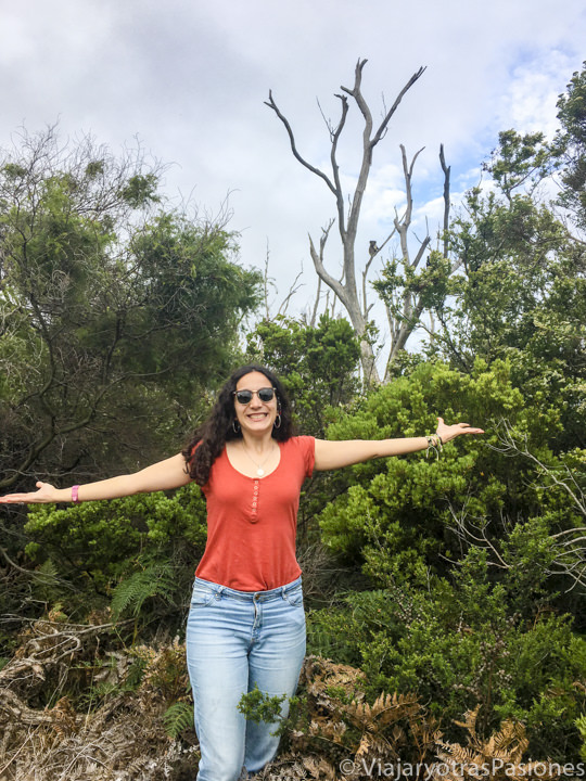 Sonriendo feliz mirando koalas cerca de Kennett River en la Great Ocean Road en Australia