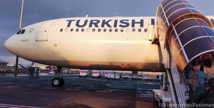 Avión de la Turkish Airlines en el aeropuerto de Johannesburgo en Sudáfrica