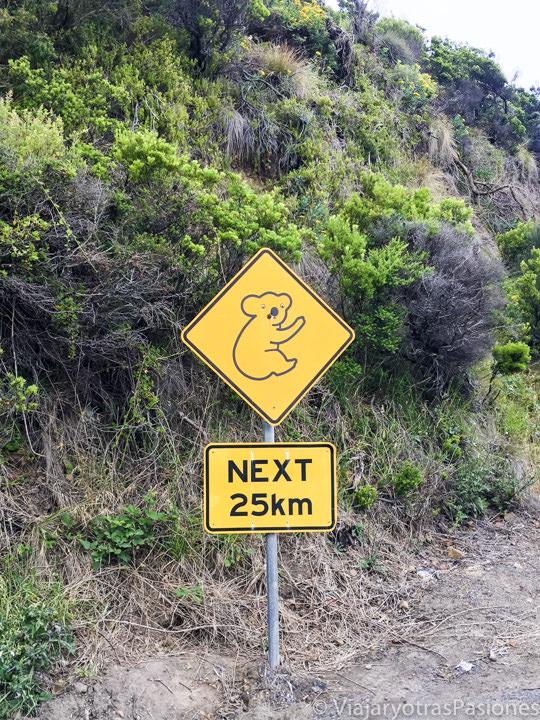 Señal que se puede ver en recorrer la Great Ocean Road con un koala en Australia