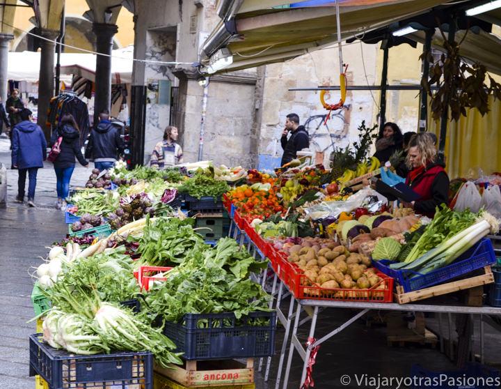 Puesto de verduras Fresca en el bonito mercado de Piazza delle Vettovaglie en Pisa en Italia
