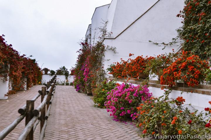 Bonita entrada con flores del Museo Larco en la ruta por Lima en un día en Perú