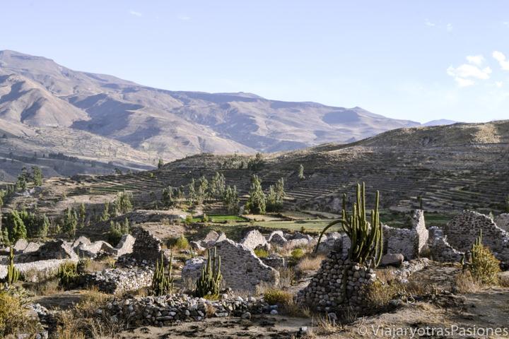 Maravilloso paisaje en el sitio arqueológico de Uyo Uyo en visitar el cañón de Colca en Perú
