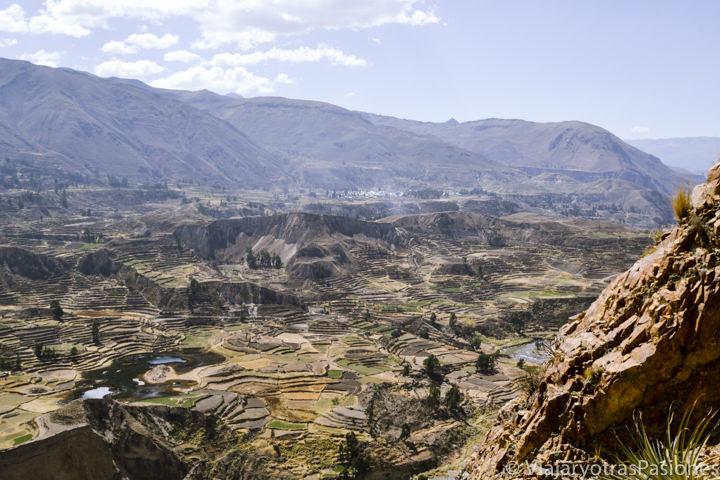 Maravillosa vista panorámica sobre el Cañón del Colca en el viaje a Perú en 3 semanas