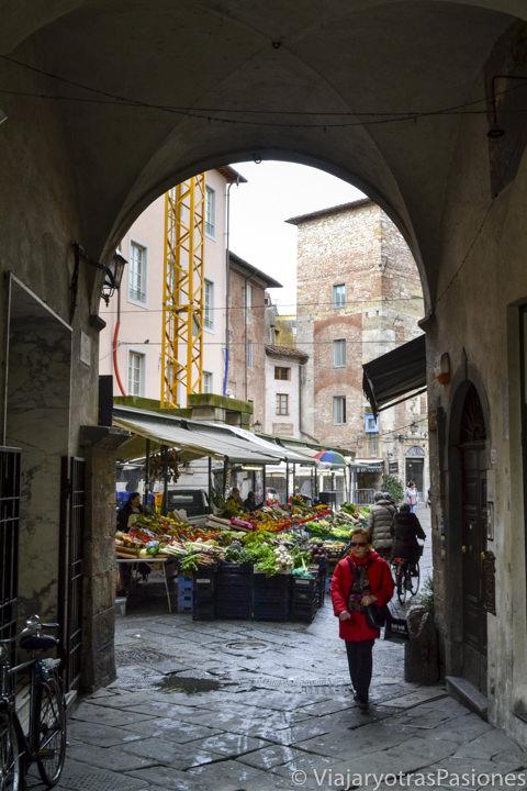 El caratteristico mercado cerca de Piazza delle Vettovaglie en la ciudad de Pisa en Italia