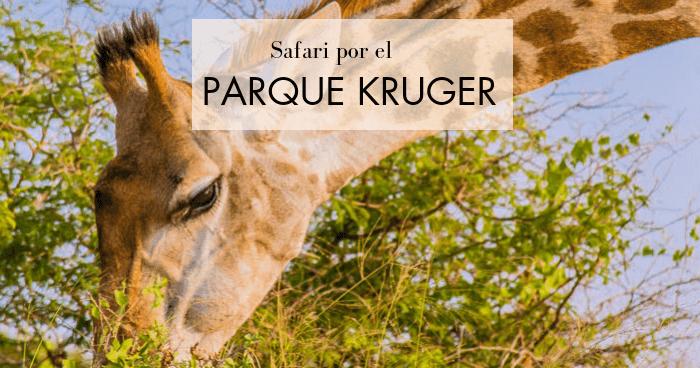 Safari en el Kruger por libre y visita al Parque