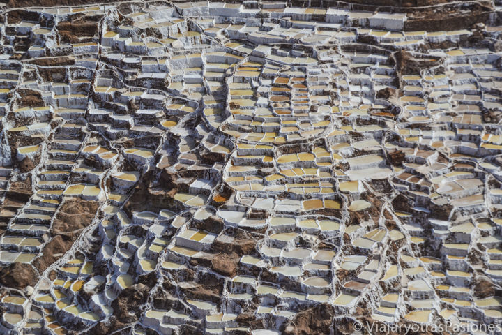 Maravillosas salinas cerca de Maras en el valle Sagrado en Perú