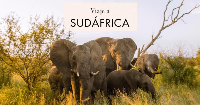 Viaje a Sudáfrica en dos semanas por libre
