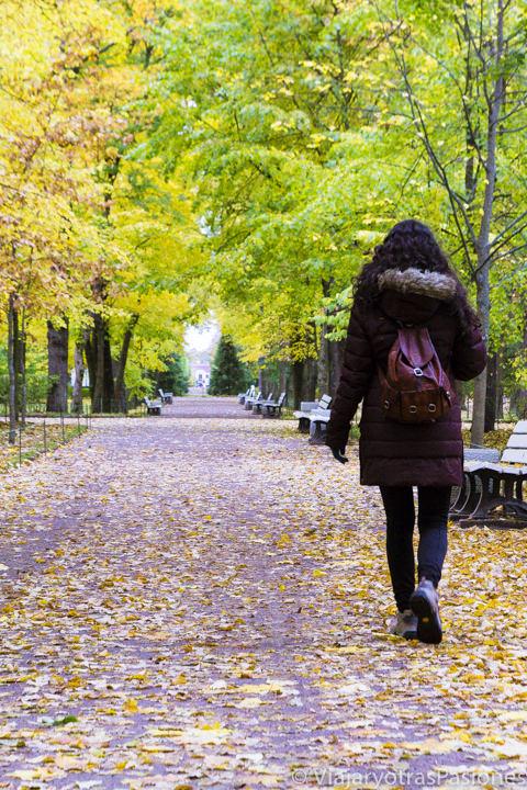 Andando en el bonito parque del Palacio Peterhof en San Petersburgo en Rusia