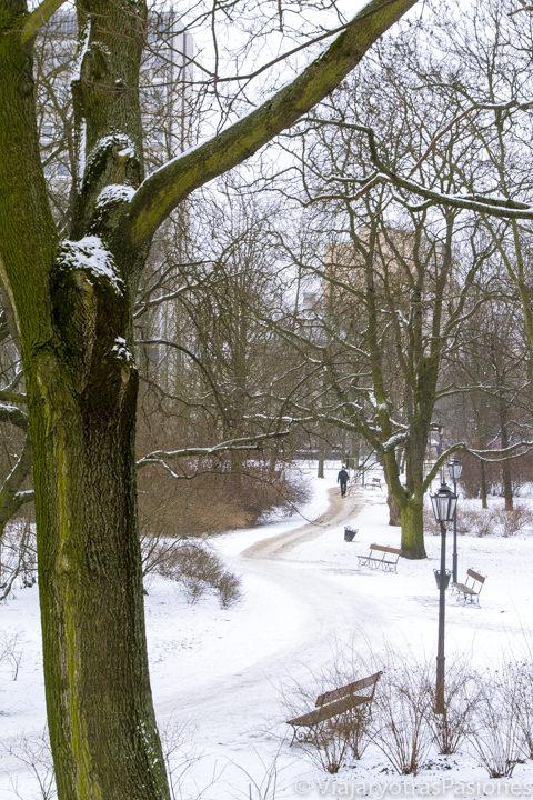 Vista de los jardines Krasinski llenos de nieve en Varsovia, en Polonia