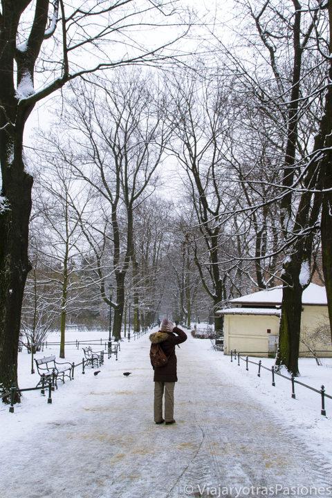 Paseo invernal en el parque de la muralla de Cracovia, en Polonia