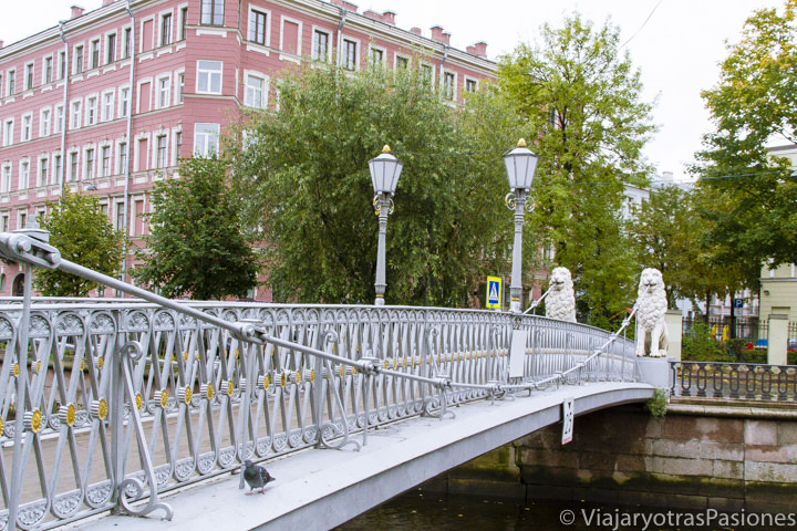 Famoso puente de los Leones en el canal Griboyedov en qué ver en San Petersburgo en Rusia