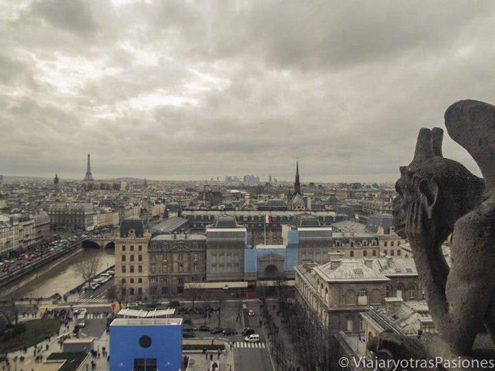 Típica gárgola de Notre Dame, París