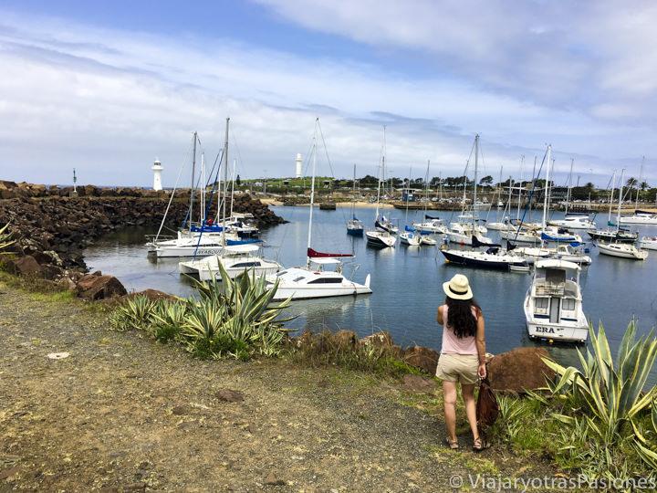 Mirando el bonito puerto de Wollongong, en Australia