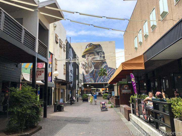 Street art en el centro de Wollongong, Australia