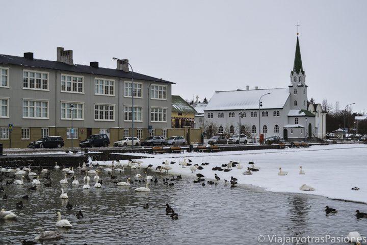 Paisaje en el lago congelado Tjörnin en Reykjavik, Islandia