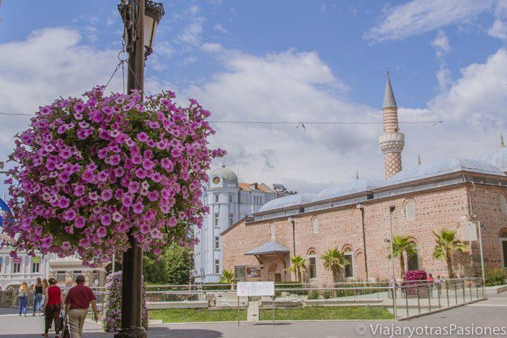 Vista de la mezquita Dzhumaya con flores en el viaje a Plovdiv en un día