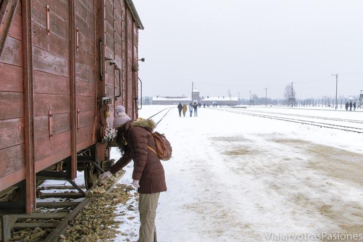 Homenaje espontáneos en el campo de exterminio de Birkenau, en Polonia