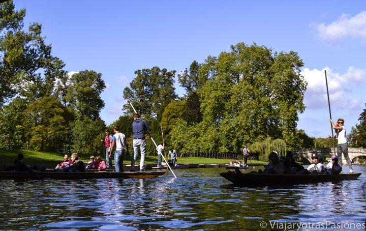 Punting tour por el río Cam en Cambridge, Inglaterra